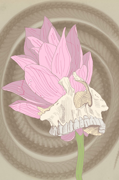 Skull and Water Lily. By me.