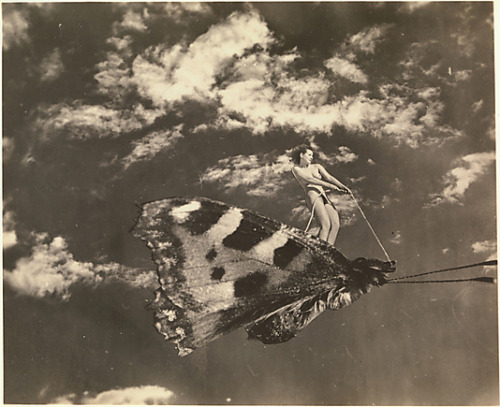 uncertaintimes:  [Woman Riding Moth]