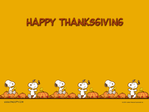 Happy Thanksgiving! What is your favorite tradition?