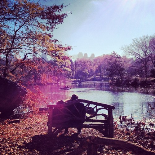 #Love in Central Park :) #newyork #nyc #thanksgiving #centralpark
