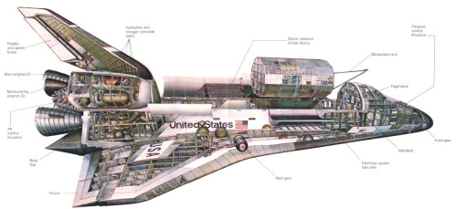 complex34:  scanzen:  Cutaway drawing of Space Shuttle. Artist: Barron Storey. In: The Space Shuttle At Work, 1979.   I used to study these so carefully so intently when I was a kid.  There was a 3-ft by 4-ft poster of this. II had it on the wall in my bedroom as a kid.