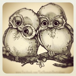 Owl always love you.   #pencil. #sketch #owl. #illustration #timshumate. #tattoo #flash.