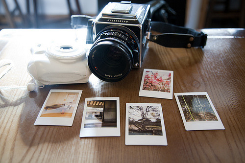 ileu:  Analog by Estrella Hwang on Flickr.