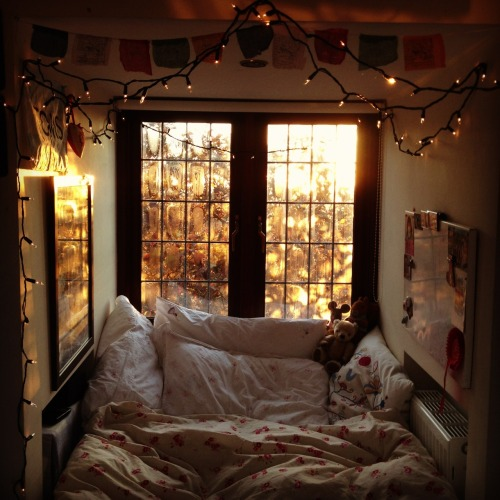 franziskahlex:  observingthese-skeletons:  wild-soulchild:  looks cozy  Want.  My room will look like this soon. When it does I'll never leave it again.  Wannntttt.