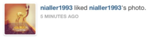 niallar:  no one is a bigger fan of niall horan than niall horan