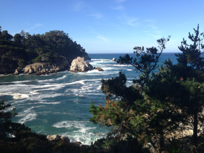 Happy Thanksgiving… (Carmel Highlands)