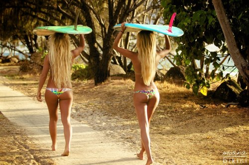 fitfuckingspo:  surfergirls