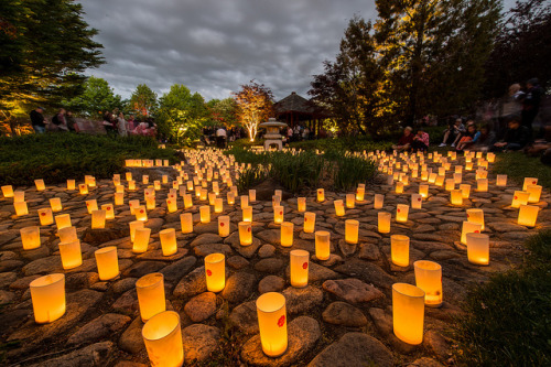 japanlove:  Nara Candle Festival (2 of 2) by Travis Longmore Photography on Flickr.