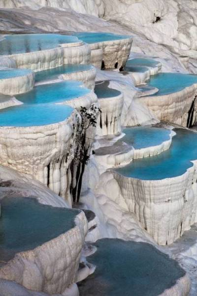 acidus:  dailycoolmag:  Natural terrace pool, Pamukkale, Turkey.  snazzy