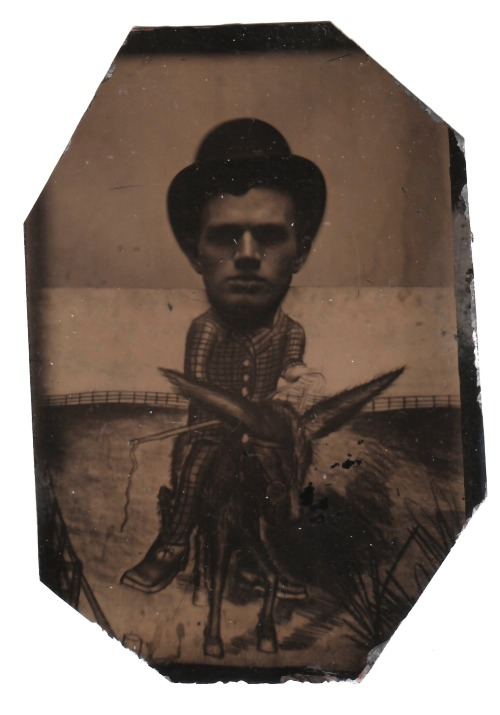 Frank sits on a Mule circa 1875 Original Tintype Photograph collection Jim Linderman Dull Tool Dim Bulb the Blog