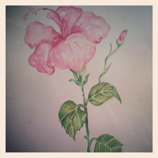 I just realised how much I miss painting my flowers … #art #painting #school #hibiscus #watercolour #memories