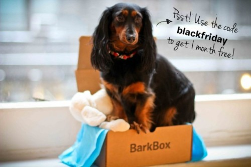 "INSTRUCTIONS: 1. Go to BarkBox.com and subscribe to a new 6-month plan.2. At checkout, enter the code blackfriday to get your free month! (Total price will be $87.50 for 6 months.)3. Do a little jig– you've just made a pup really happy. This offer is for new subscriptions only and cannot be applied to a subscription's renewal. If you are a current subscriber and you want to add a second subscription, just go here and click ""Add a New BarkBox."" High paws all around!"
