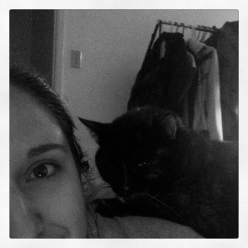 Kitty on my back #kitty #cat #bubba #lovey #snuggles