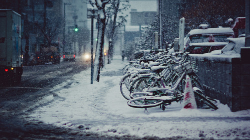 heartisbreaking:  Winter surprised you. by Camera is there. on Flickr.