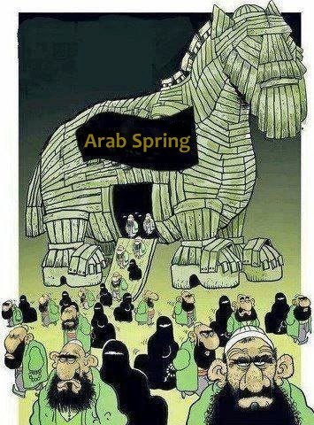 "Arab Spring?!?! Hahahaha No Thanks! Truth is, it's a Deep Dark Cold Arab Winter. Dictators (who belong to the 20th Century and the cold war) of past decades are vanishing, today a worse disease is (creeping in like a cancer) taking hold of the Maghreb (North Africa: Tunisia, Libya etc & Middle East), No matter how you want to look at it, the key thing here, is that INJUSTICE is here to stay, whether under an old fashioned Dictatorship or a crappy theocratic Religious state. North Africans and Middle Easterners are NOT going to enjoy any Spring anytime soon. Let them enjoy (and vote ""democratically"") the ""Arab Trojan""."