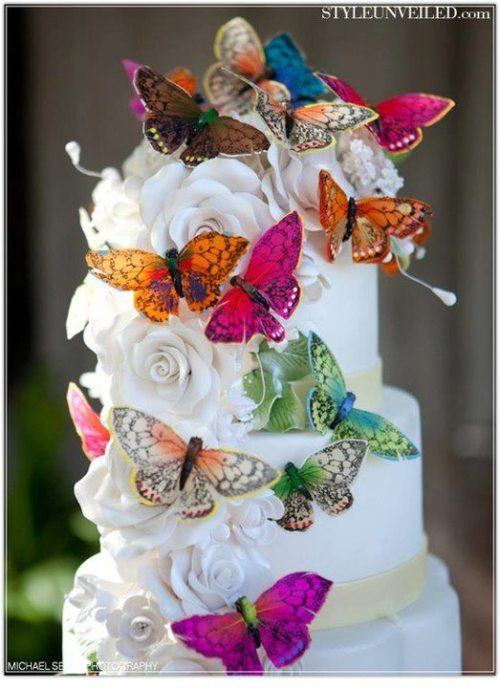 Gorgeous butterfly cake!