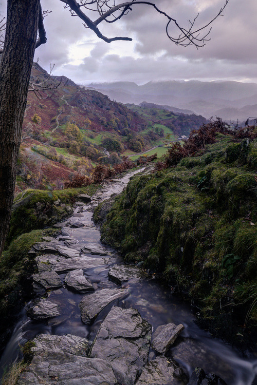 Rocky Stream, Lake District, England photo via caledonian