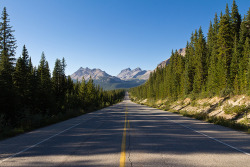 mountainish:  Icefields Parkway (by fuerst)