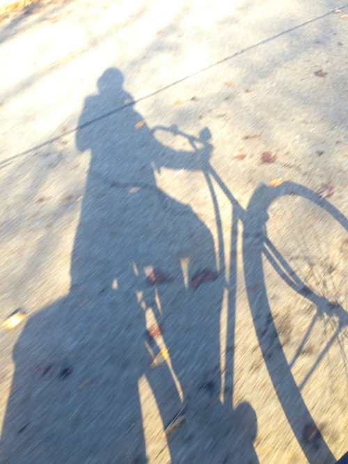 Zipping along on my bicycle.