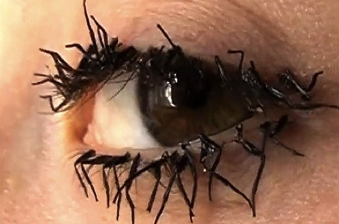 DEAD FLY LEG EYELASHES Somewhere Jeff Goldblum is going _nuts_ over this picture.