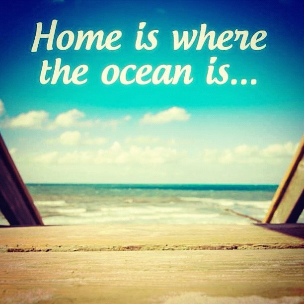 mstogsdill:  #quotes #oceans #beach