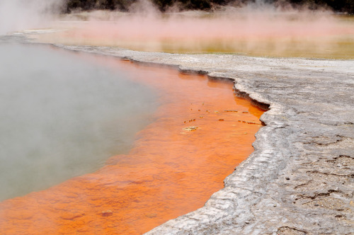 Wai-O-Tapo Thermal Park, New Zealand