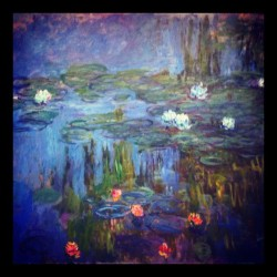 "Claude Monet ""Water-Lillie's"". 1914-17. #monet #claudemonet #original #painting #art #light #redlection #lillies #portland #portlandartmuseum #pond #french #france #beautiful #colorful #goodfromfarbutfadfromgood #ignation #instagood  (at Portland Art Museum)"