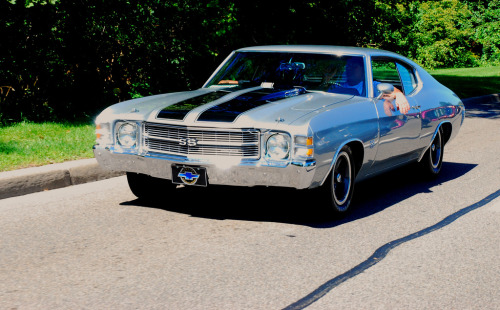 carpr0n:  Summer jam Starring: Chevrolet Chevelle SS (by jcfreed_1999)  Chevelle SS