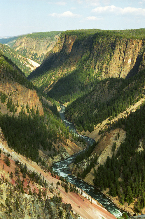 definitelydope:  Looking Down the Grand Canyon of the Yellowstone (by Robby Edwards)