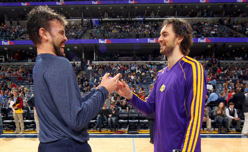 nba:  Marc Gasol of the Memphis Grizzlies greets his brother Pau Gasol of the Los Angeles Lakers before a game on November 23, 2012 at FedExForum in Memphis, Tennessee. (Photo by Joe Murphy/NBAE via Getty Images)  Cute!