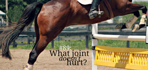Equestrian Problem #88 Submitted by Anon