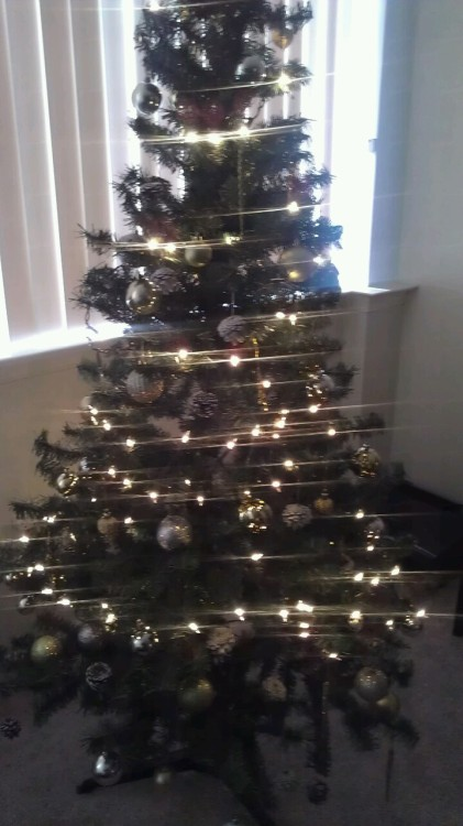 My tree! I did a gold and silver theme this year. Can't believe it's almost advent season again. I guess I should end this blog since we are well beyond the summer but I am undecided…still have lots of photos to share.  We'll see.