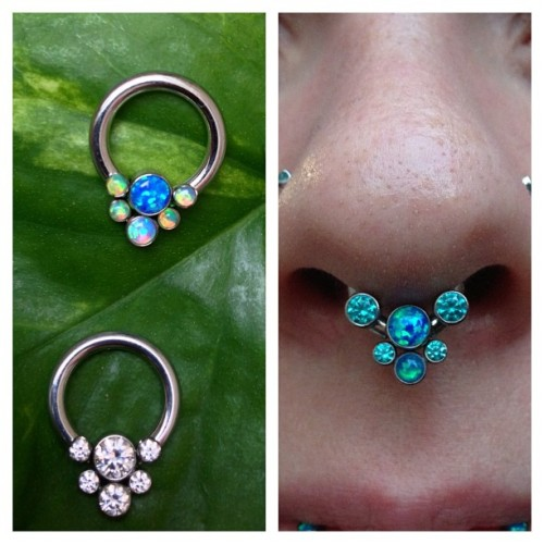 We have several fancy Anatometal forward facing gem circular barbells with captive gem clusters in stock! Come in and buy someone some fanciness for Xmas! There is still some time to custom order special gem combinations, too! #piercing #bodypiercing #philly #philadelphia #southstreet #AssociationofProfessionalPiercers #APP #NoKaOiBodyPiercing #instagood #instacool #jewelry #bodyjewelry #anatometal #bling #septum  #septumpiercing #septumjewelry (at NoKaOi Tiki Tattoo and Piercing)