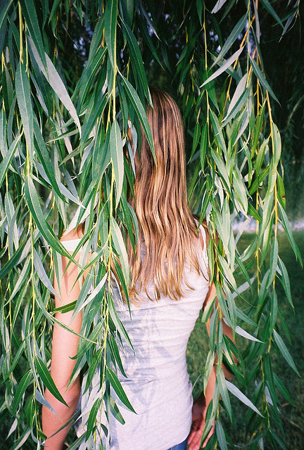 00008208082008208200200082:   untitled by Katherine Squier on Flickr.