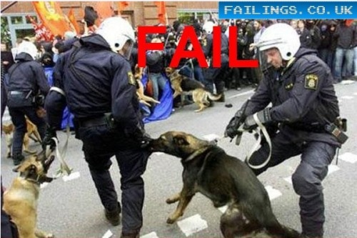 the-absolute-best-gifs:  Check out 10 of the worst police fails ever.