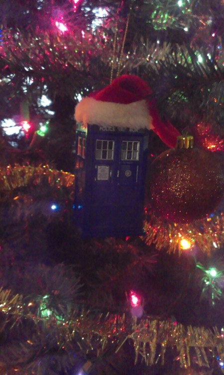 And a TARDIS in a Christmas tree!!!