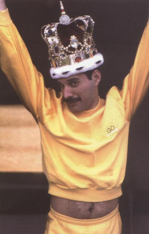 37/90 photos of Freddie Mercury