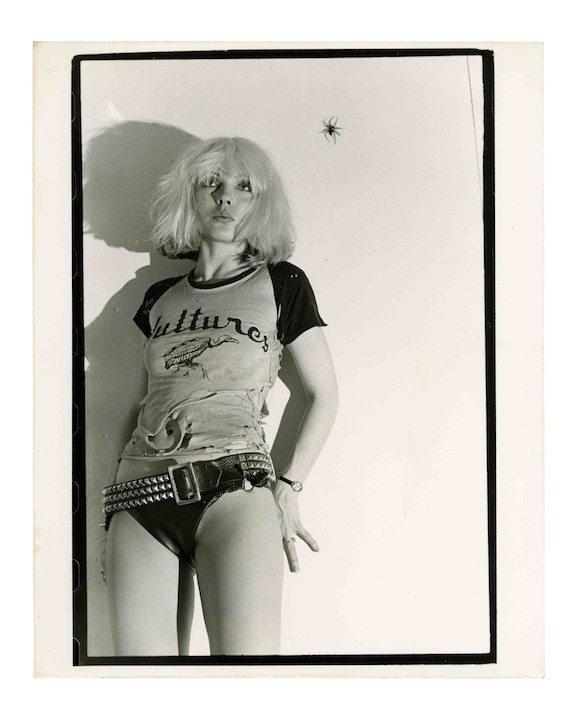 Got a Girl Crush On: always and forever Debbie Harry (via suicidewatch)