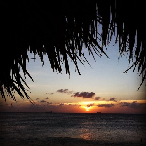 Sunset con pollina #sunset #aruba #sun #palapa #sky #beach #clouds #arashibeach  (at Arashi Beach)