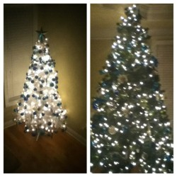 We have two Christmas trees❄🎄🎅🎁 #picstitch #favorite #time #of #year