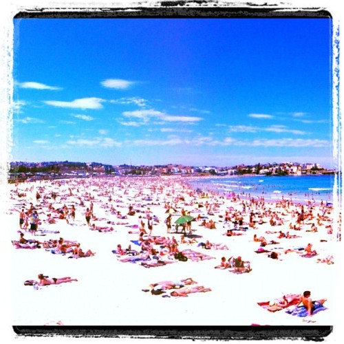 Slightly busy at Bondi today… www.fearmanphoto.com