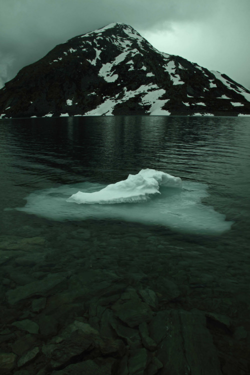 oivm:  Little iceberg
