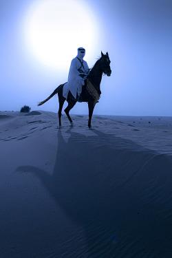 sky landscape sun sand landmark horses nomad Sahara sahara desert