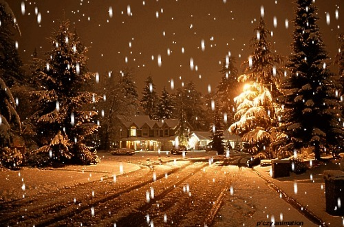 bluepueblo:   Snowy Night, Boulder, Colorado photo via besttravelphotos