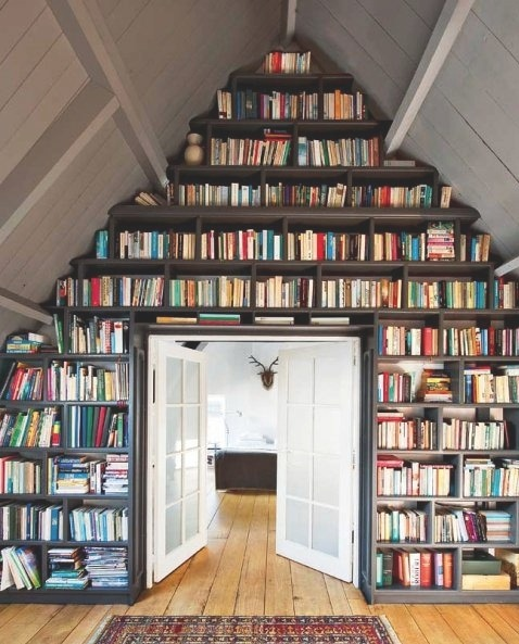 erinchu:  my dream. please?  I could use shelving to this degree