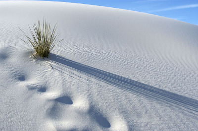 symphony-of-the-elements:  WHITE SANDS 4 by ~jbr5150