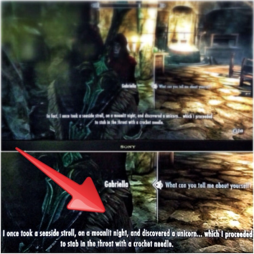 I was playing Skyrim and found this crochet-related exchange.