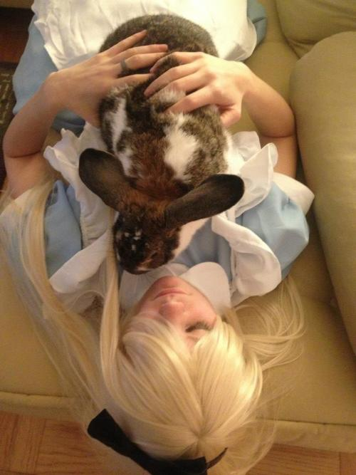 me, chibineko cosplay as Alice from Alice in Wonderland featuring my rabbit, Colin