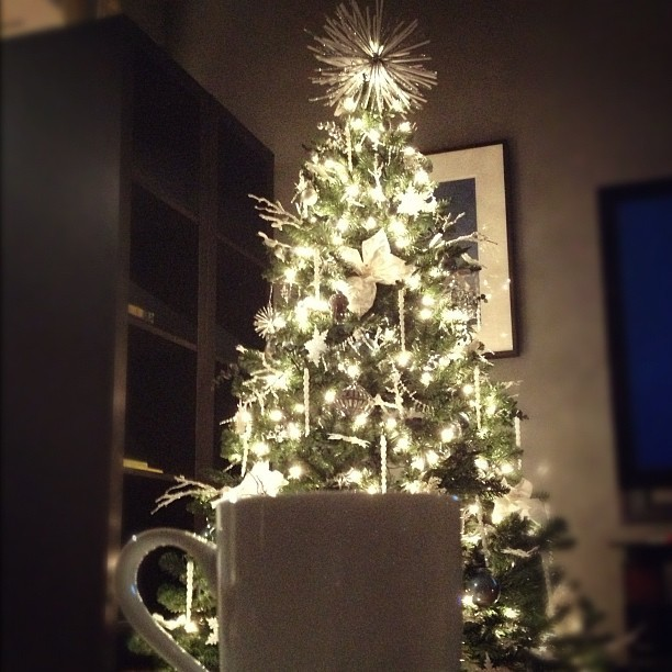 Tea & tree… and #TheWalkingDead