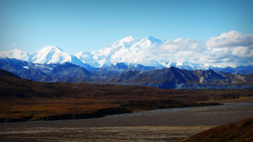 Denali - Mountains - Alaska by blmiers2 on Flickr. Outdoor Sporting Goods